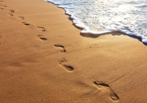 footprint image