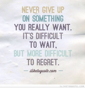 never give up_blog
